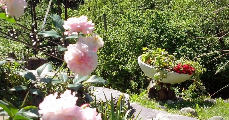 rose gite lisa alpes maritimes